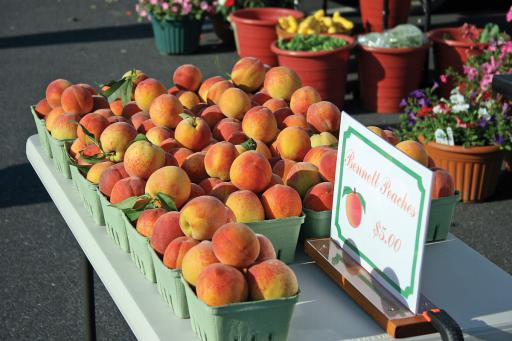 Bennett's peaches from the inaugural Bethany Beach Farmers' Market.