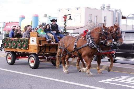 Carriage rides will be offered in Bethany Beach each Saturday in December this year, from 1 to 4 p.m.