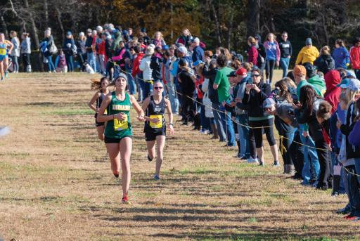 Indian River's Sarah Roehl pushes at the finish line during the Henlopen Conference Championships nearly two weeks ago.