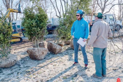 Jeremy Hager, ISA board-certified Master Arborist, and Randy Childress of Delta Nursery discuss holly tree placement at DBG.