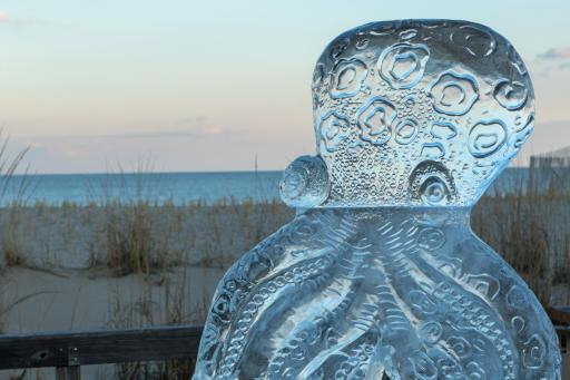 This year's Fire & Ice Festival expands from Bethany Beach to Ocean View and Millville, running throughout the weekend. Ice sculptures, like this icy octupus from last year's festival, will be on display on the boardwalk, at Bear Trap Dunes and at Lord's Landscaping, where the ice feature will be an ice slide.