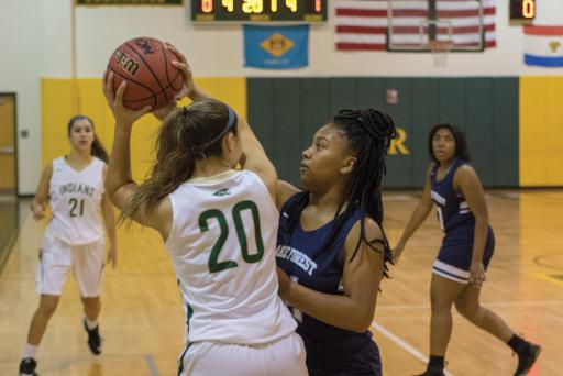 Indian River's Micayla Meehan looks to pass into the paint versus Lake Forest.