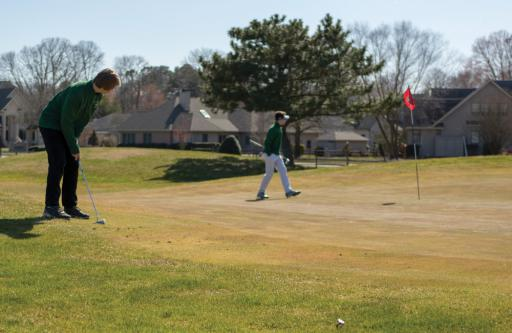 Indian River golfers putt on the green at Cripple Creek Golf & Country Club on Tuesday, March 26.