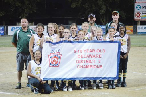 The Lower Sussex Little League team celebrates it's victory as the District 3 champions.