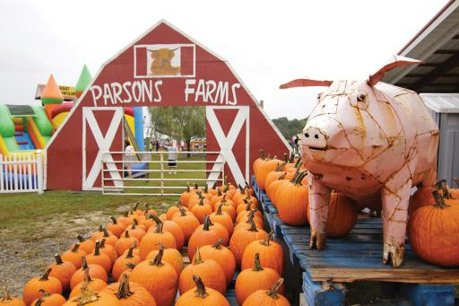 The Parsons Farms Fall Festival is an annual celebration of all things autumn.